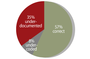 Chart Audit - Pie Chart